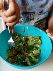 Salata Micului Ajutor de Bucatar