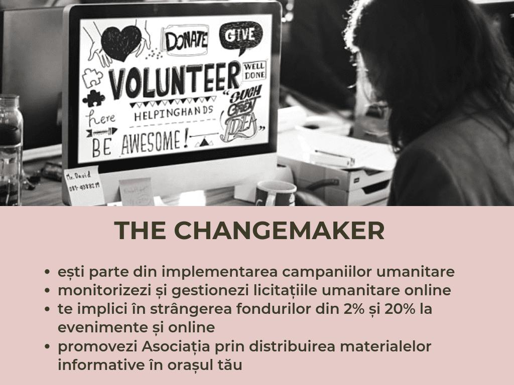 Voluntariat (11)