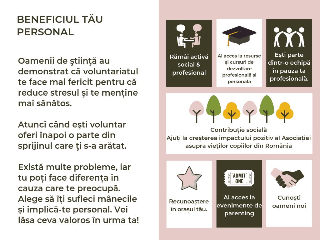 Voluntariat (2)